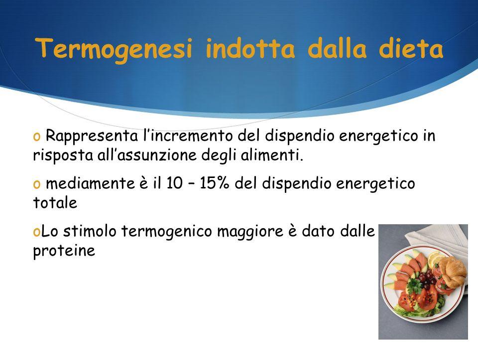 Termogenesi indotta dalla dieta