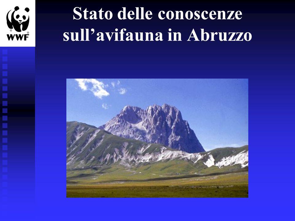 Stato delle conoscenze sull'avifauna in Abruzzo