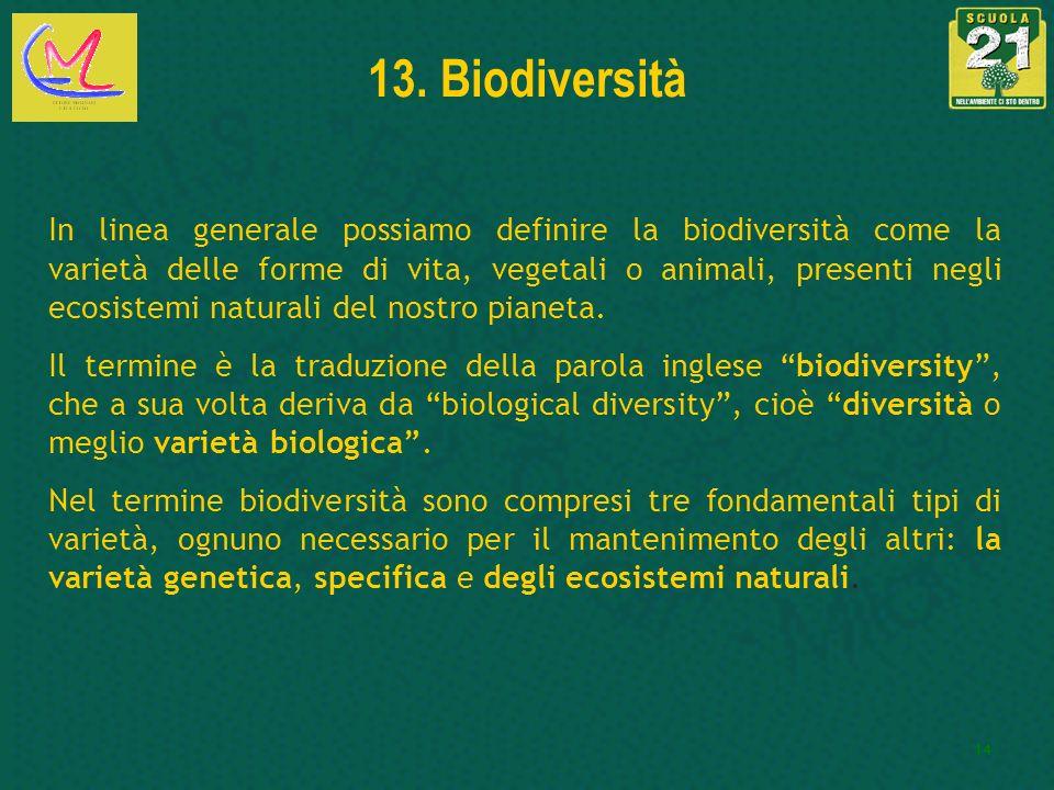 13. Biodiversità