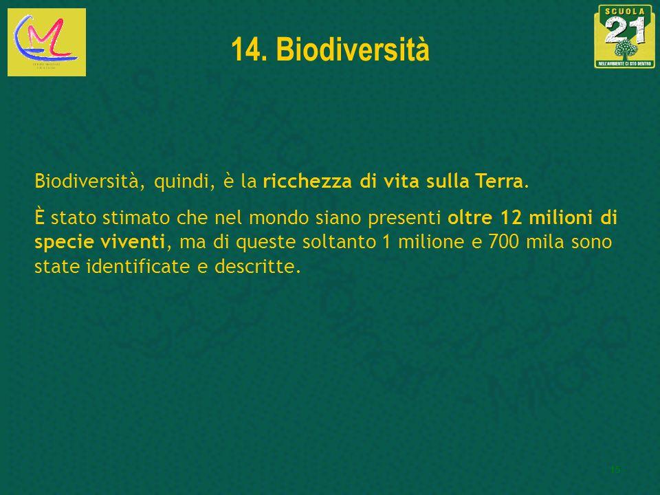 14. Biodiversità Biodiversità, quindi, è la ricchezza di vita sulla Terra.