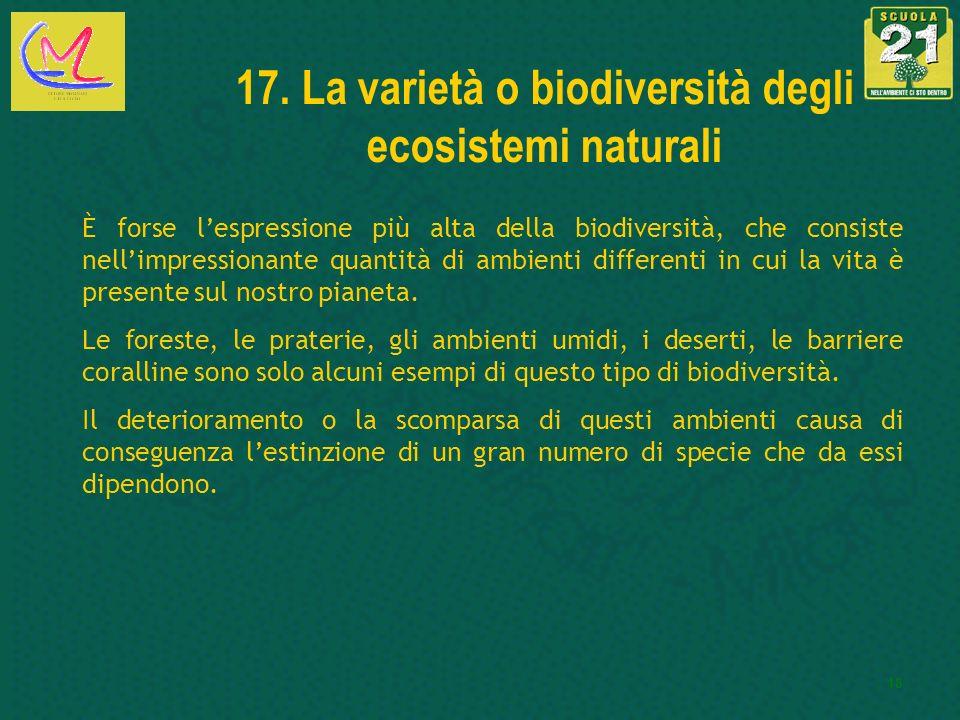 17. La varietà o biodiversità degli ecosistemi naturali