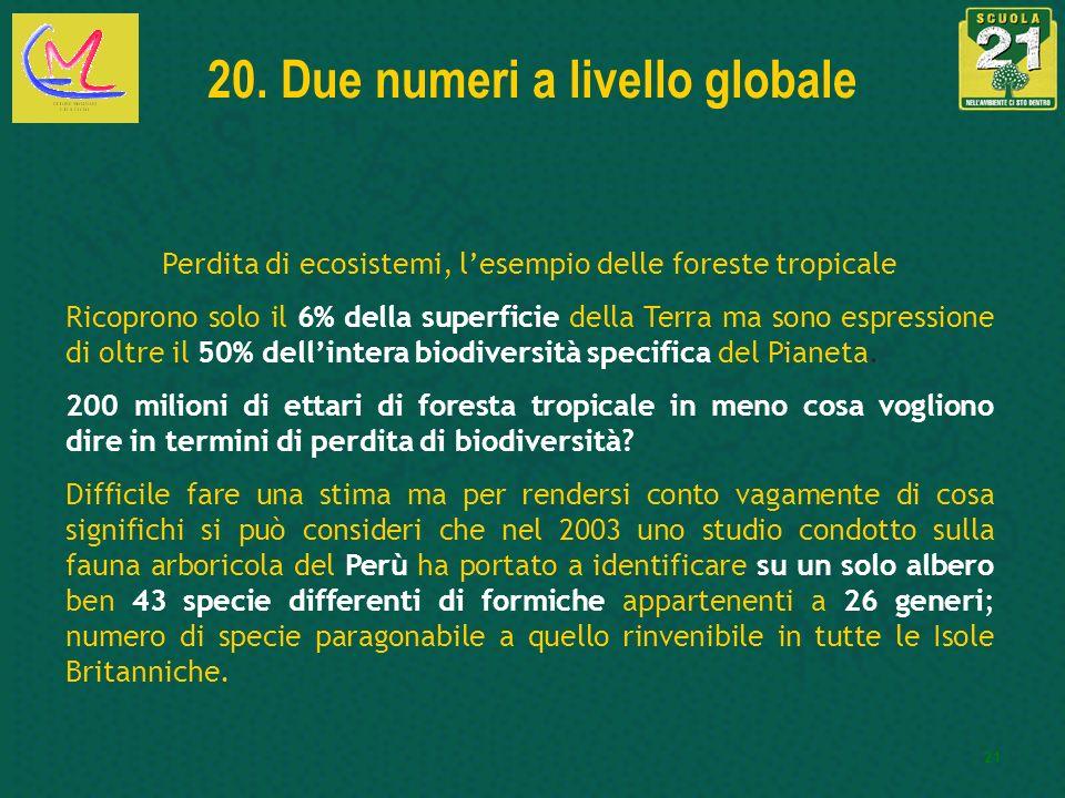 20. Due numeri a livello globale