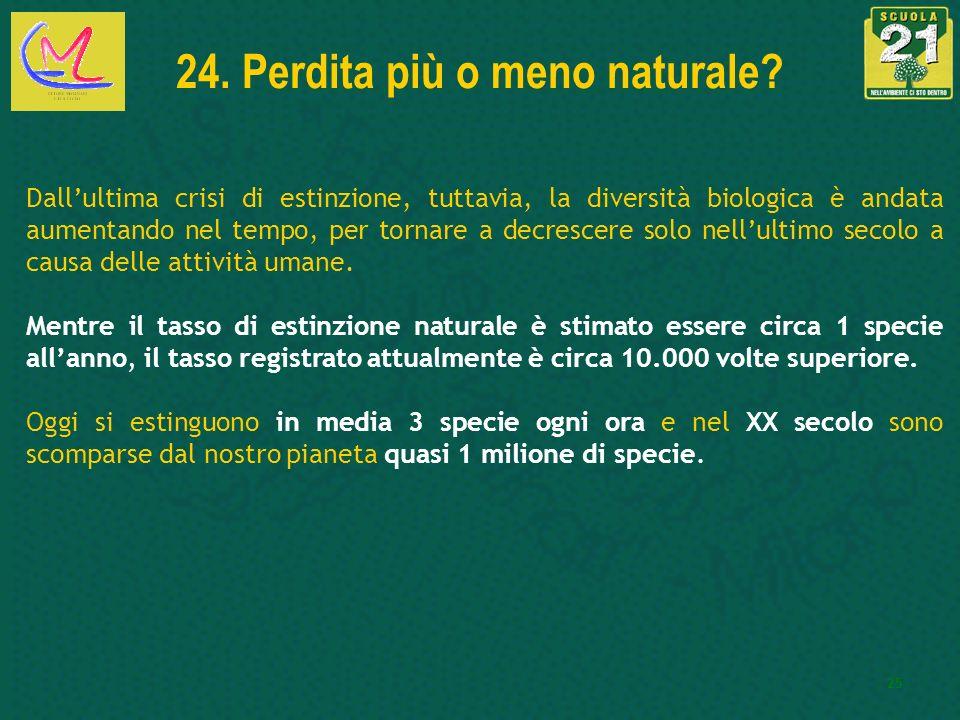 24. Perdita più o meno naturale