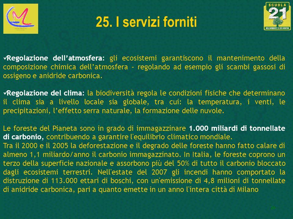 25. I servizi forniti