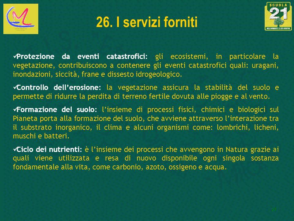26. I servizi forniti