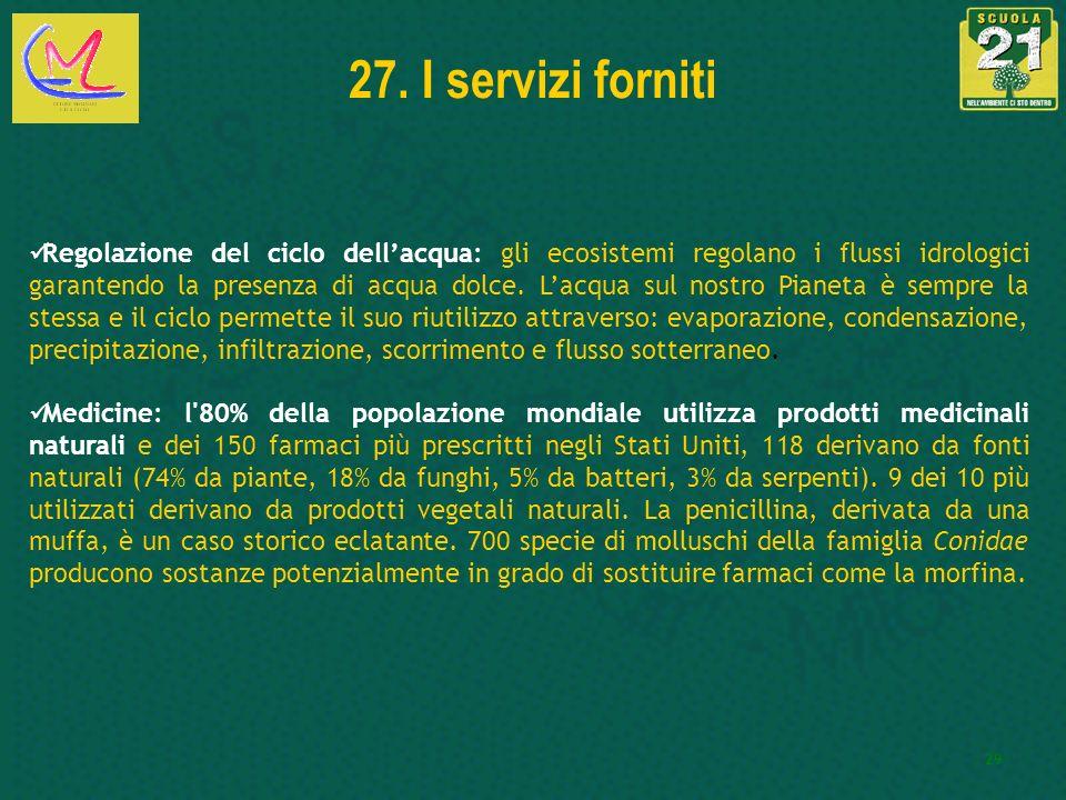 27. I servizi forniti