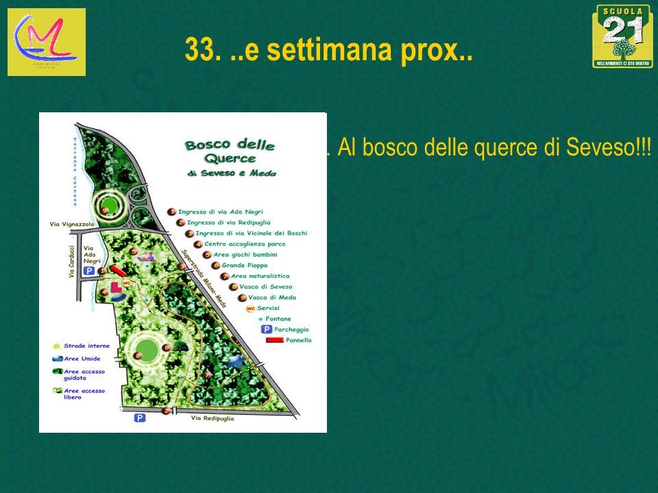 .. Al bosco delle querce di Seveso!!!
