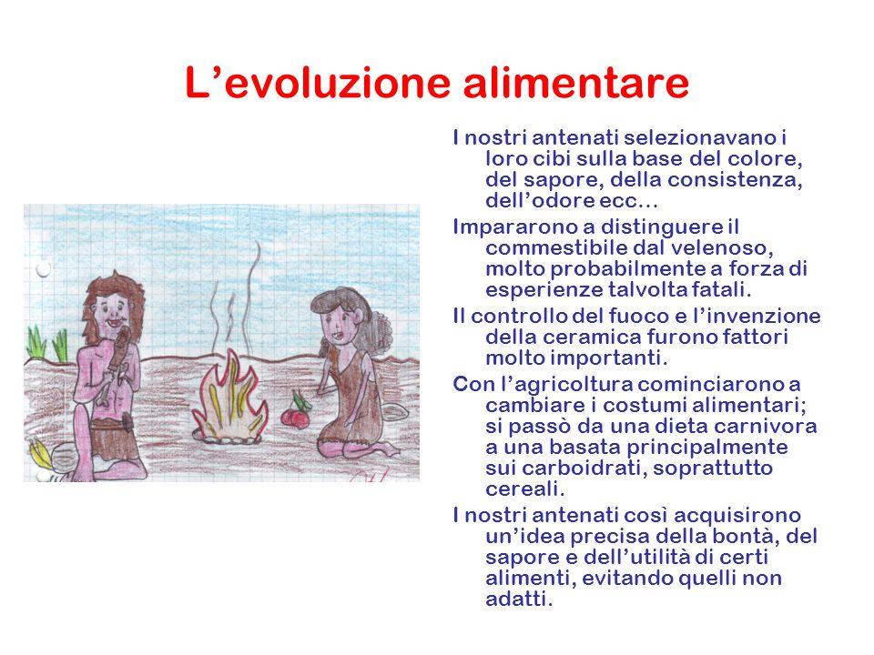 L'evoluzione alimentare