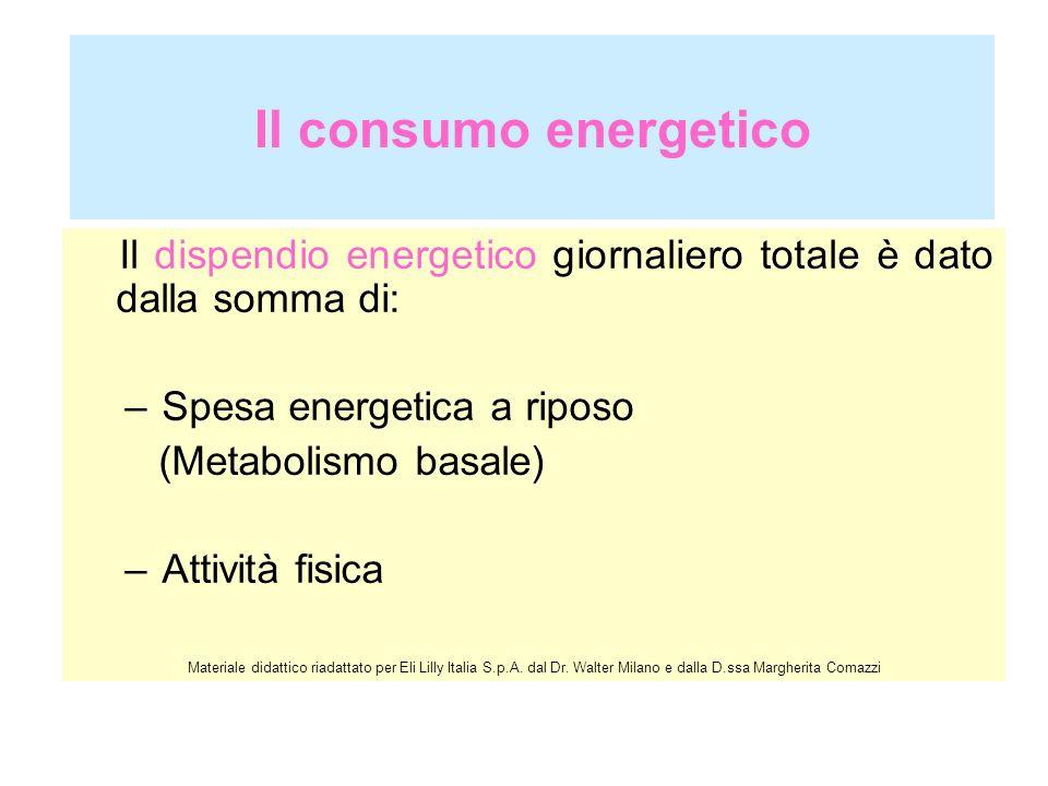 Il consumo energetico Il dispendio energetico giornaliero totale è dato dalla somma di: Spesa energetica a riposo.