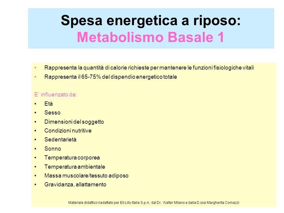 Spesa energetica a riposo: Metabolismo Basale 1