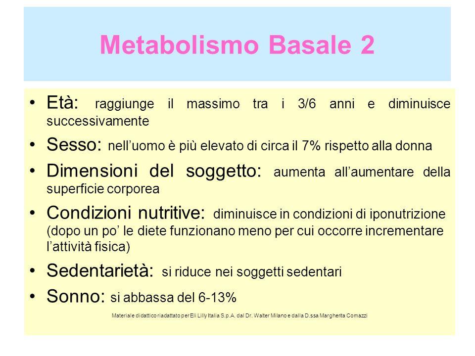 Metabolismo Basale 2Età: raggiunge il massimo tra i 3/6 anni e diminuisce successivamente.