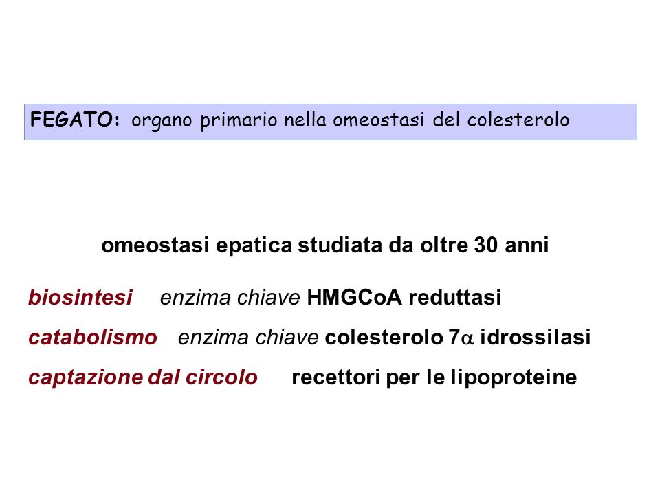 omeostasi epatica studiata da oltre 30 anni