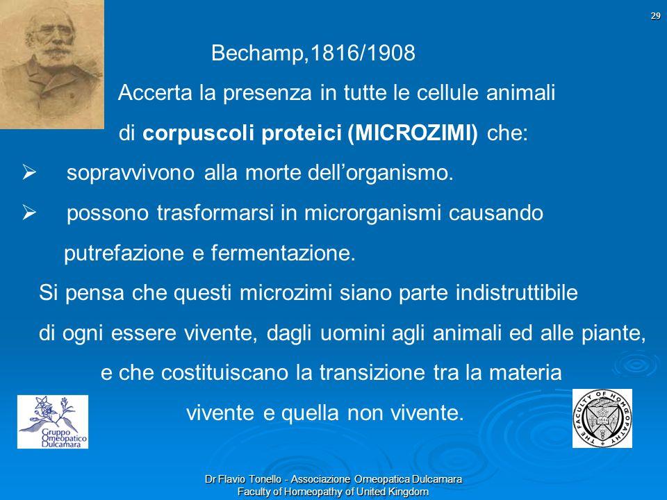 Bechamp,1816/1908 Accerta la presenza in tutte le cellule animali. di corpuscoli proteici (MICROZIMI) che: