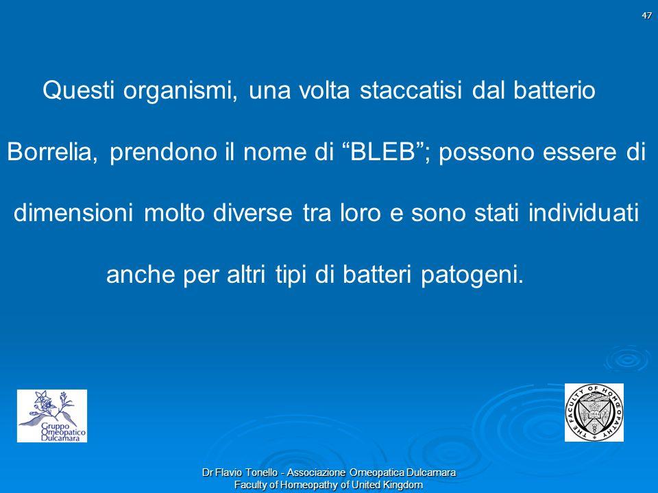 Questi organismi, una volta staccatisi dal batterio Borrelia, prendono il nome di BLEB ; possono essere di