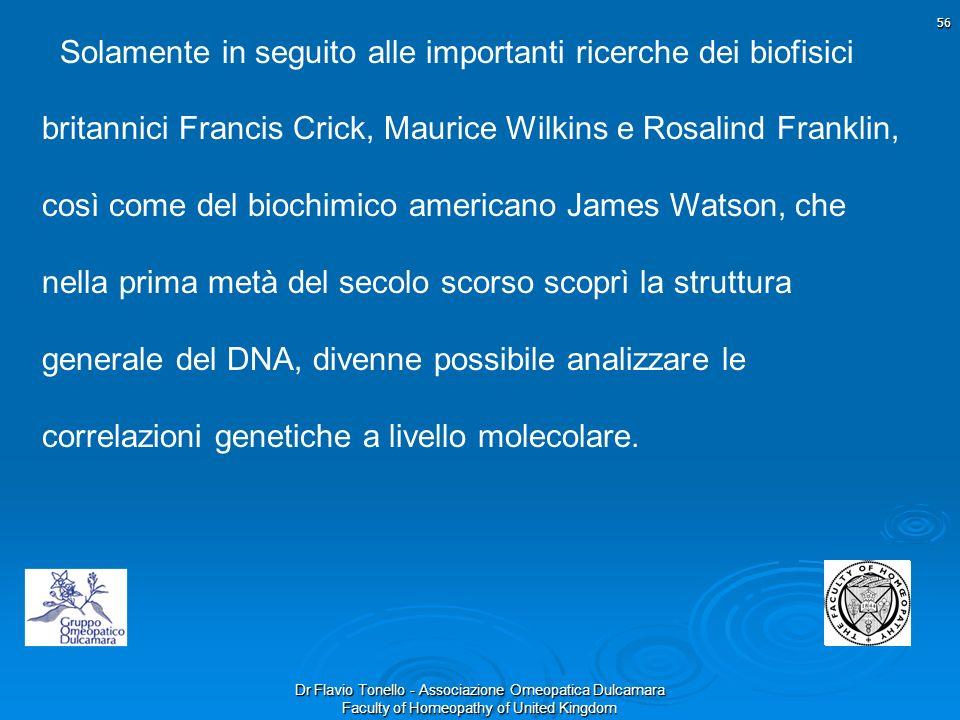 Solamente in seguito alle importanti ricerche dei biofisici britannici Francis Crick, Maurice Wilkins e Rosalind Franklin,