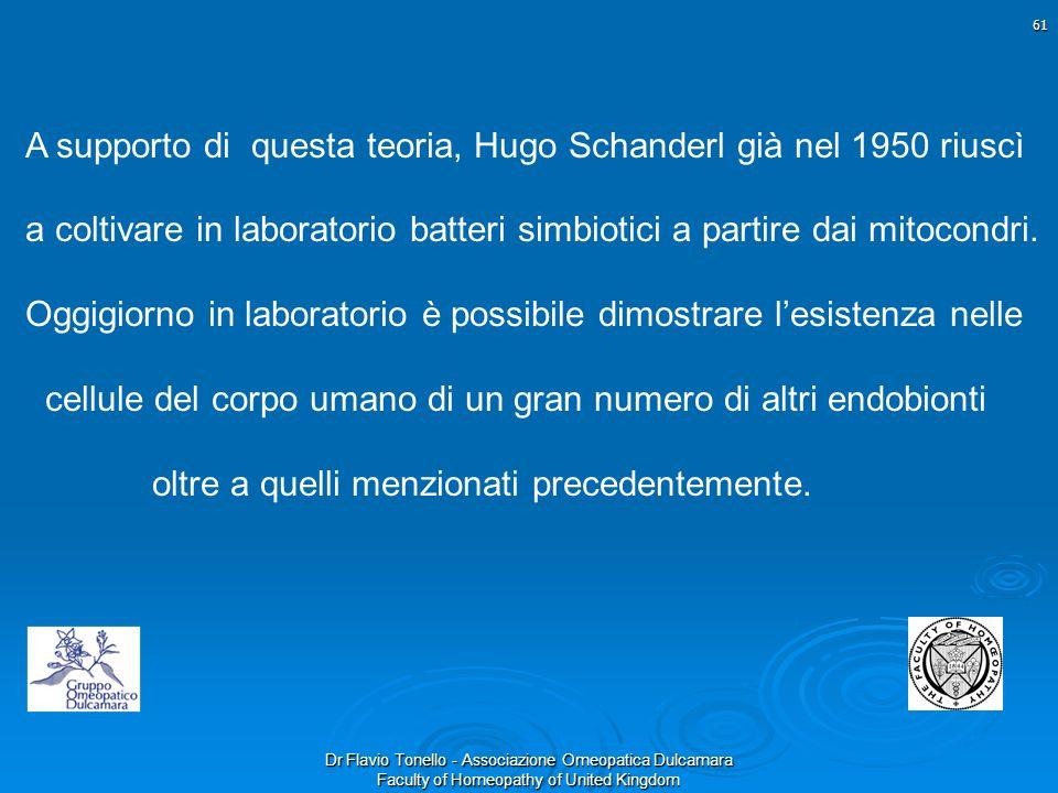 A supporto di questa teoria, Hugo Schanderl già nel 1950 riuscì a coltivare in laboratorio batteri simbiotici a partire dai mitocondri.