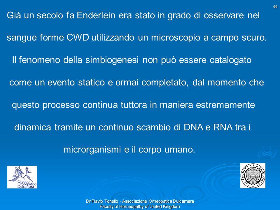 Già un secolo fa Enderlein era stato in grado di osservare nel sangue forme CWD utilizzando un microscopio a campo scuro.