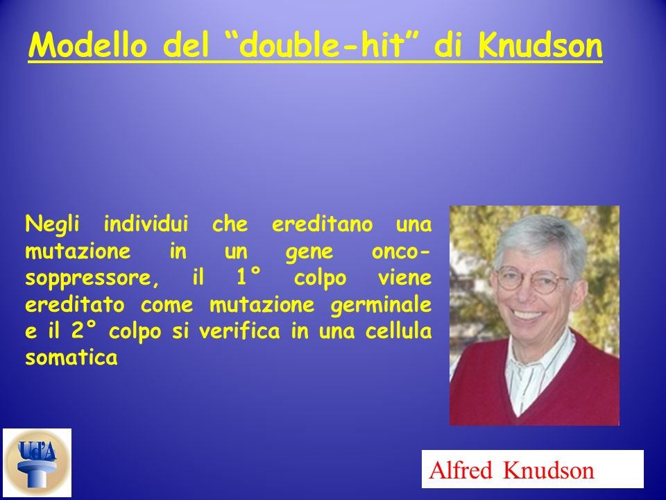 Modello del double-hit di Knudson