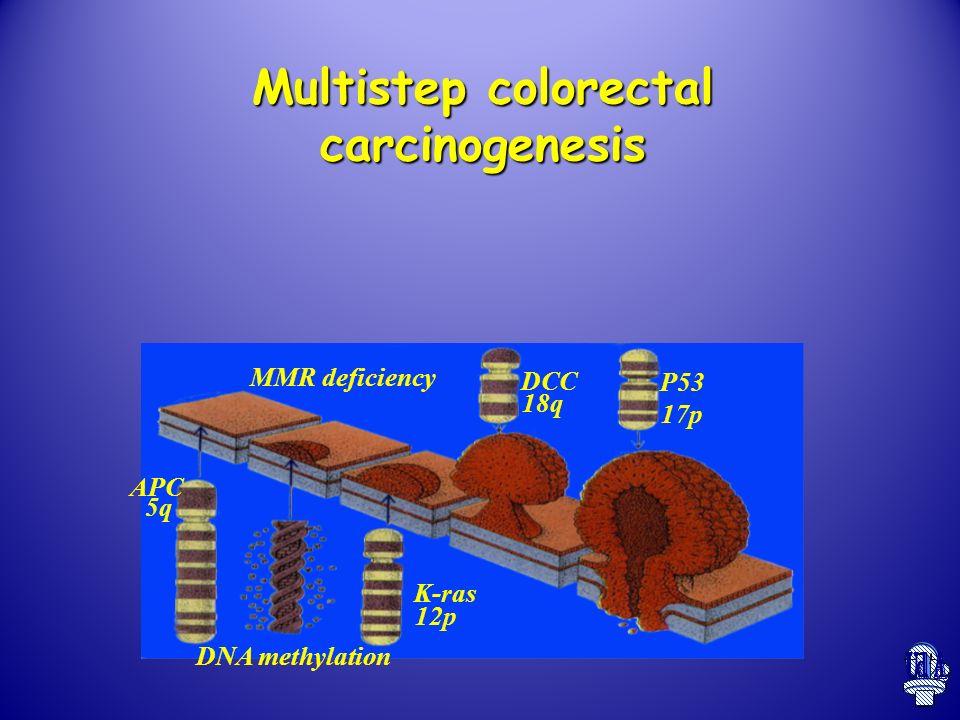 Multistep colorectal carcinogenesis