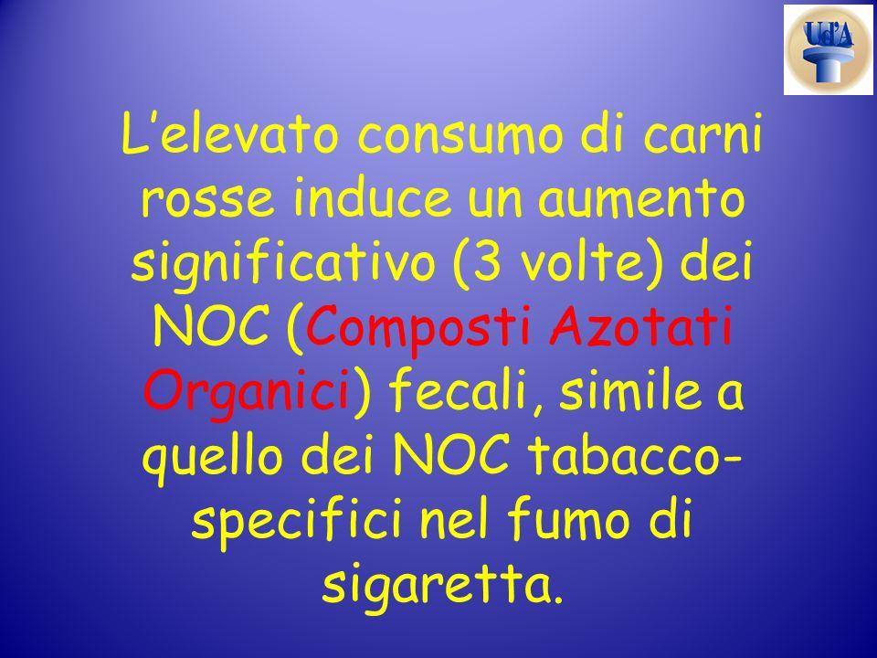 L'elevato consumo di carni rosse induce un aumento significativo (3 volte) dei NOC (Composti Azotati Organici) fecali, simile a quello dei NOC tabacco-specifici nel fumo di sigaretta.