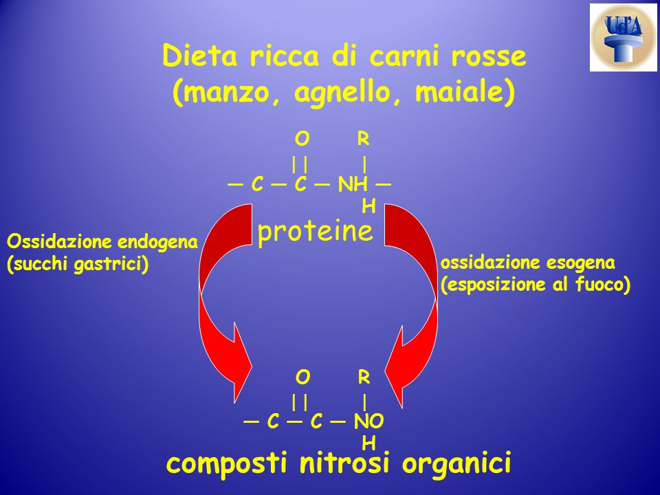 Dieta ricca di carni rosse (manzo, agnello, maiale)