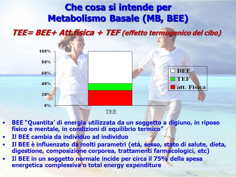 Che cosa si intende per Metabolismo Basale (MB, BEE)