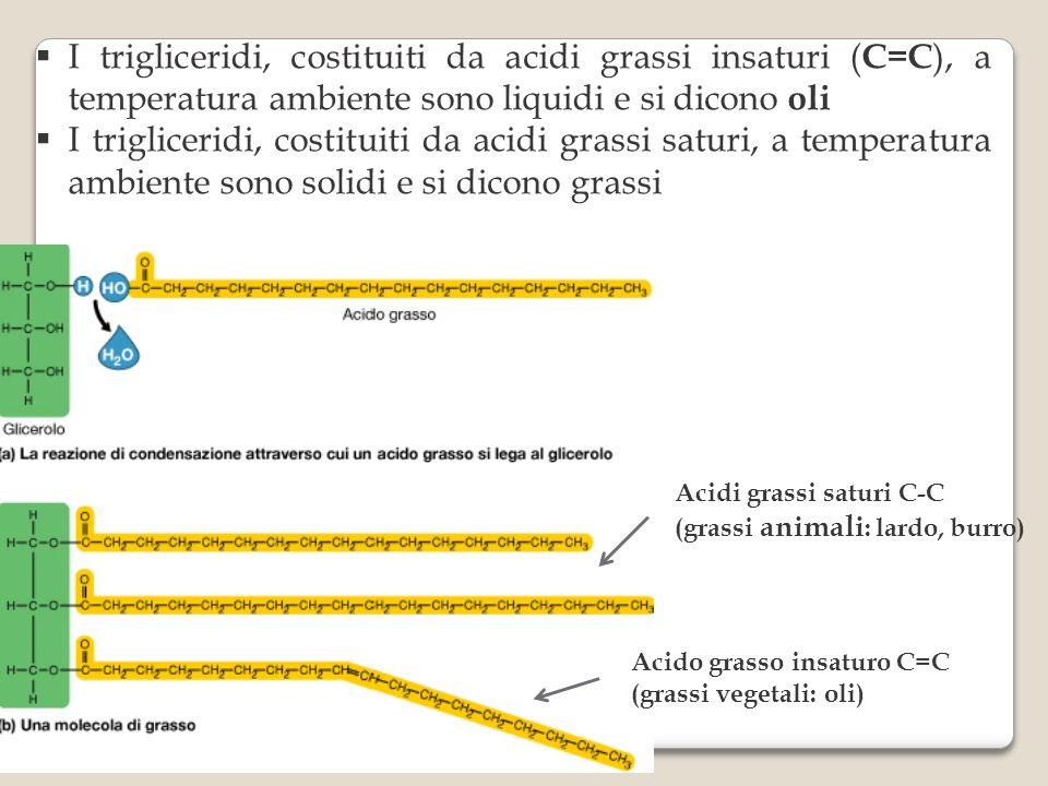 I trigliceridi, costituiti da acidi grassi insaturi (C=C), a temperatura ambiente sono liquidi e si dicono oli