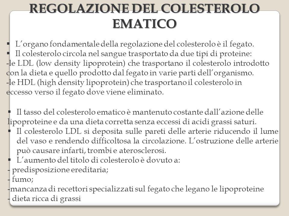 REGOLAZIONE DEL COLESTEROLO EMATICO