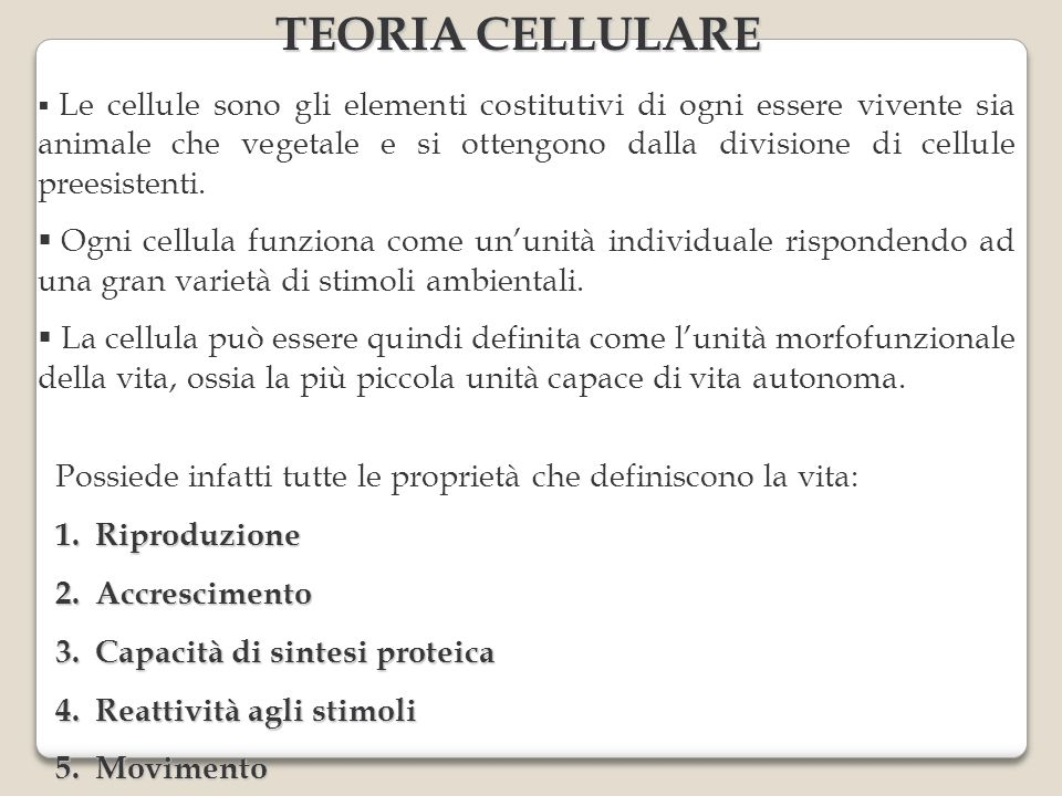 TEORIA CELLULARE
