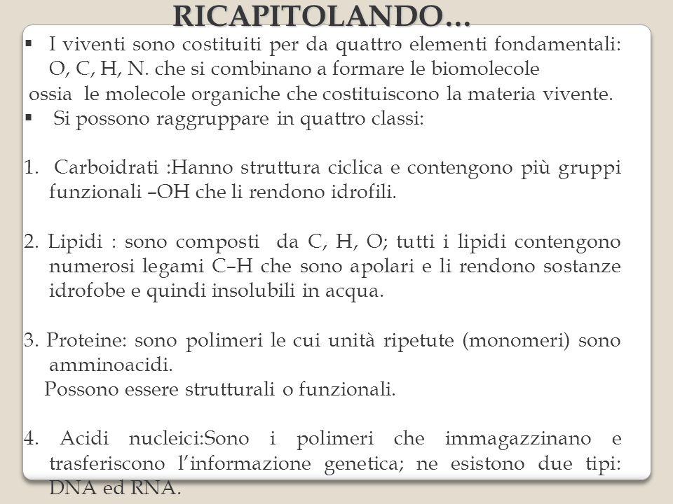 RICAPITOLANDO… I viventi sono costituiti per da quattro elementi fondamentali: O, C, H, N. che si combinano a formare le biomolecole.