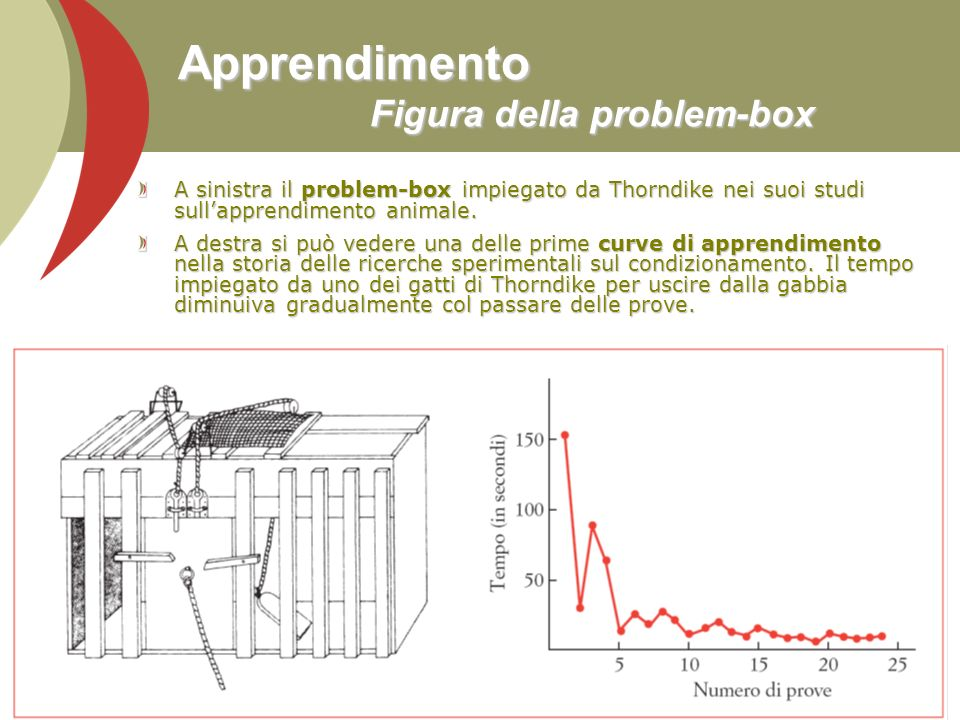 Apprendimento Figura della problem-box