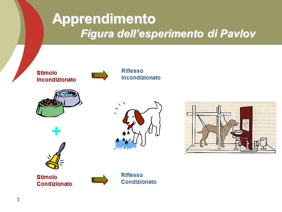 Apprendimento Figura dell'esperimento di Pavlov