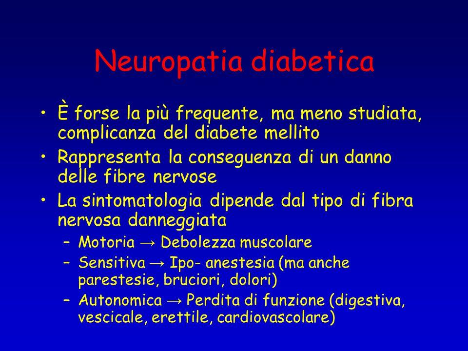 Neuropatia diabetica È forse la più frequente, ma meno studiata, complicanza del diabete mellito.
