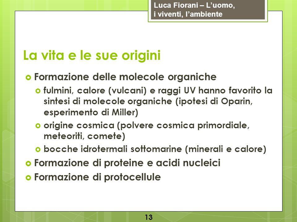 La vita e le sue origini Formazione delle molecole organiche