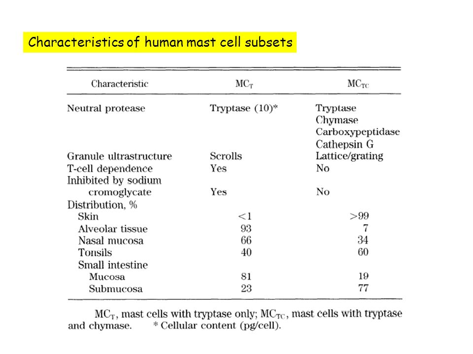 Characteristics of human mast cell subsets