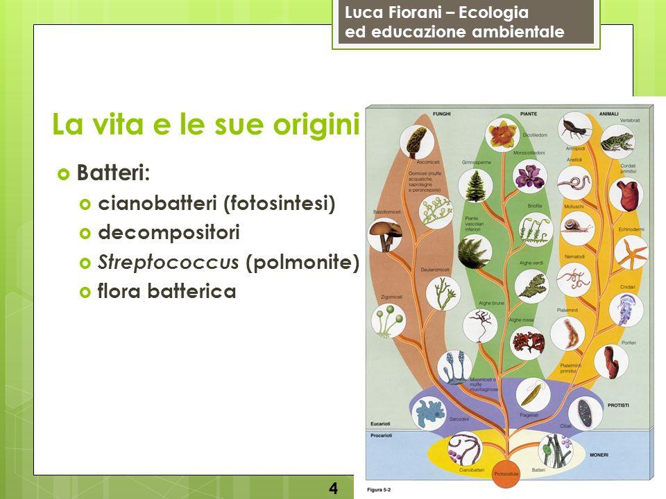 La vita e le sue origini Batteri: cianobatteri (fotosintesi)
