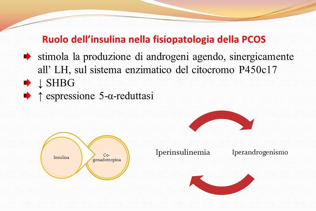 Ruolo dell'insulina nella fisiopatologia della PCOS