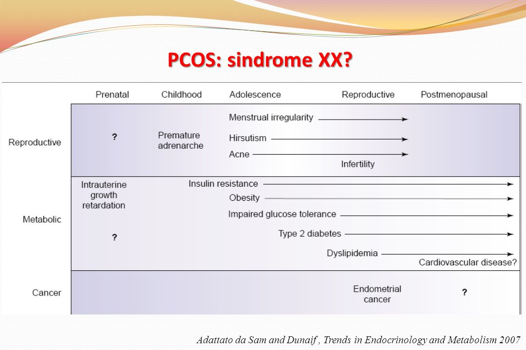 PCOS: sindrome XX Adattato da Sam and Dunaif , Trends in Endocrinology and Metabolism 2007