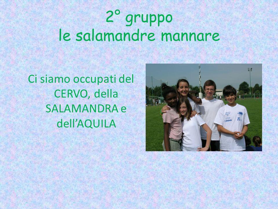 2° gruppo le salamandre mannare