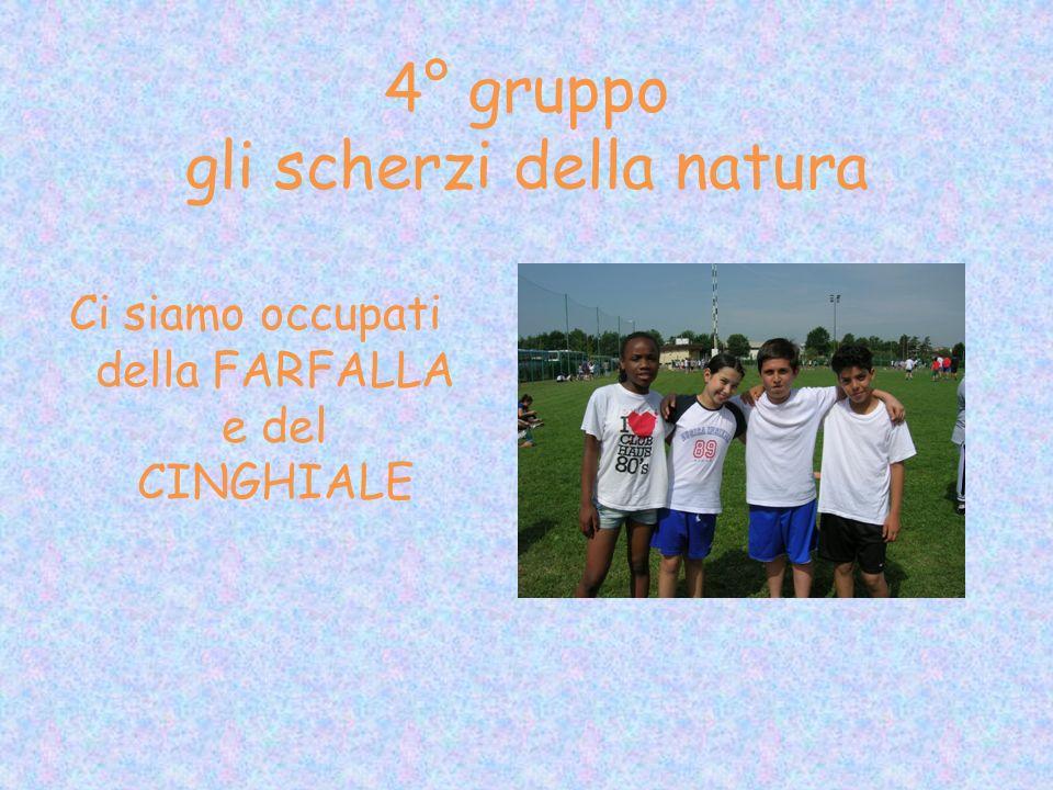4° gruppo gli scherzi della natura