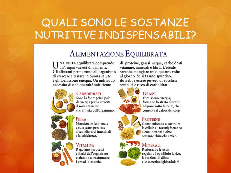 QUALI SONO LE SOSTANZE NUTRITIVE INDISPENSABILI