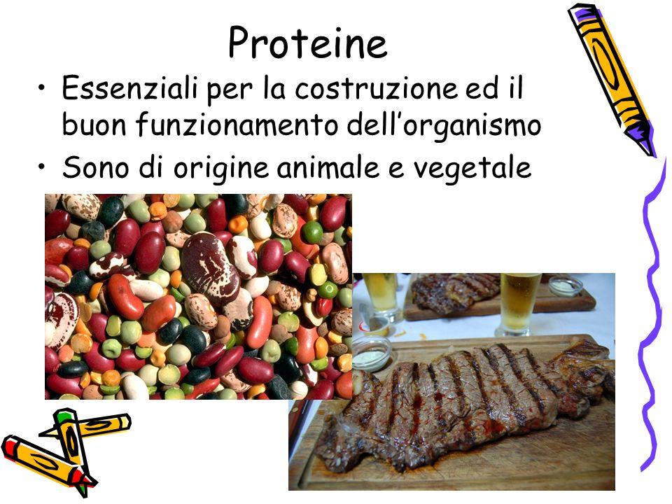 Proteine Essenziali per la costruzione ed il buon funzionamento dell'organismo.