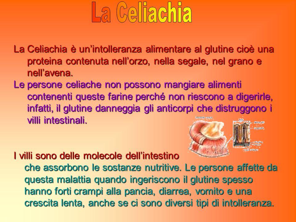 La Celiachia La Celiachia è un'intolleranza alimentare al glutine cioè una. proteina contenuta nell'orzo, nella segale, nel grano e.