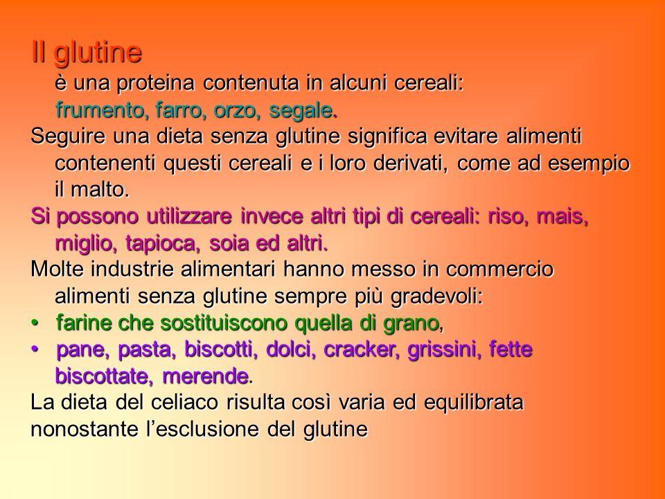 Il glutine è una proteina contenuta in alcuni cereali: