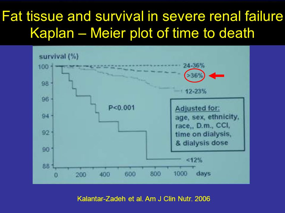 Fat tissue and survival in severe renal failure