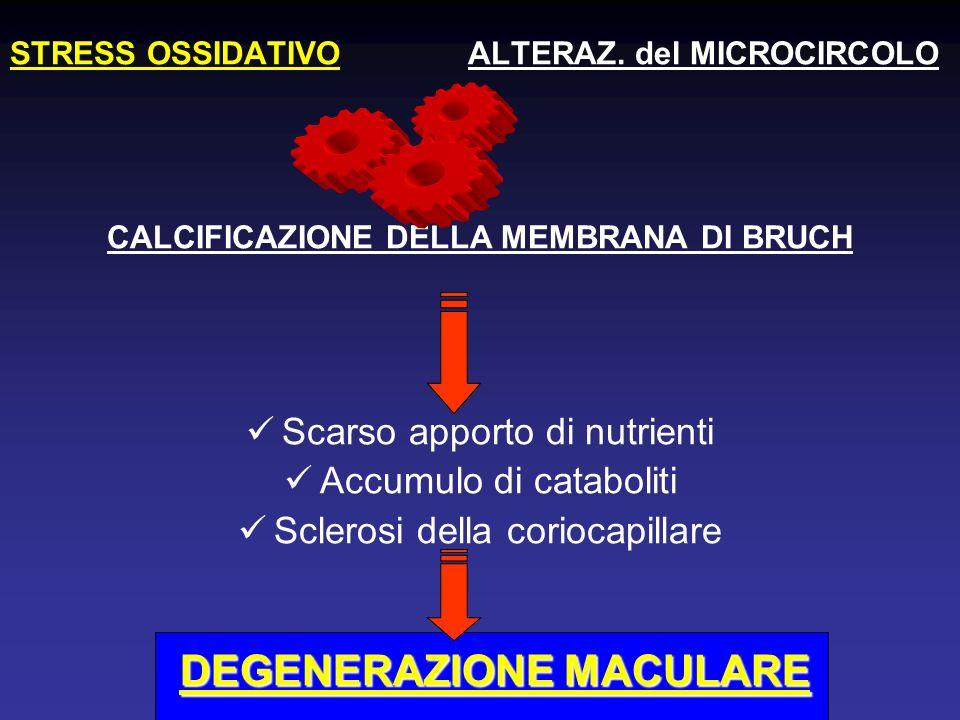 CALCIFICAZIONE DELLA MEMBRANA DI BRUCH DEGENERAZIONE MACULARE