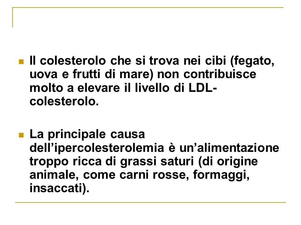 Il colesterolo che si trova nei cibi (fegato, uova e frutti di mare) non contribuisce molto a elevare il livello di LDL-colesterolo.