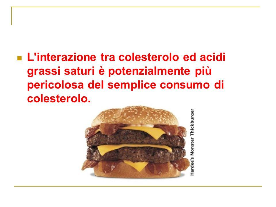 L interazione tra colesterolo ed acidi grassi saturi è potenzialmente più pericolosa del semplice consumo di colesterolo.