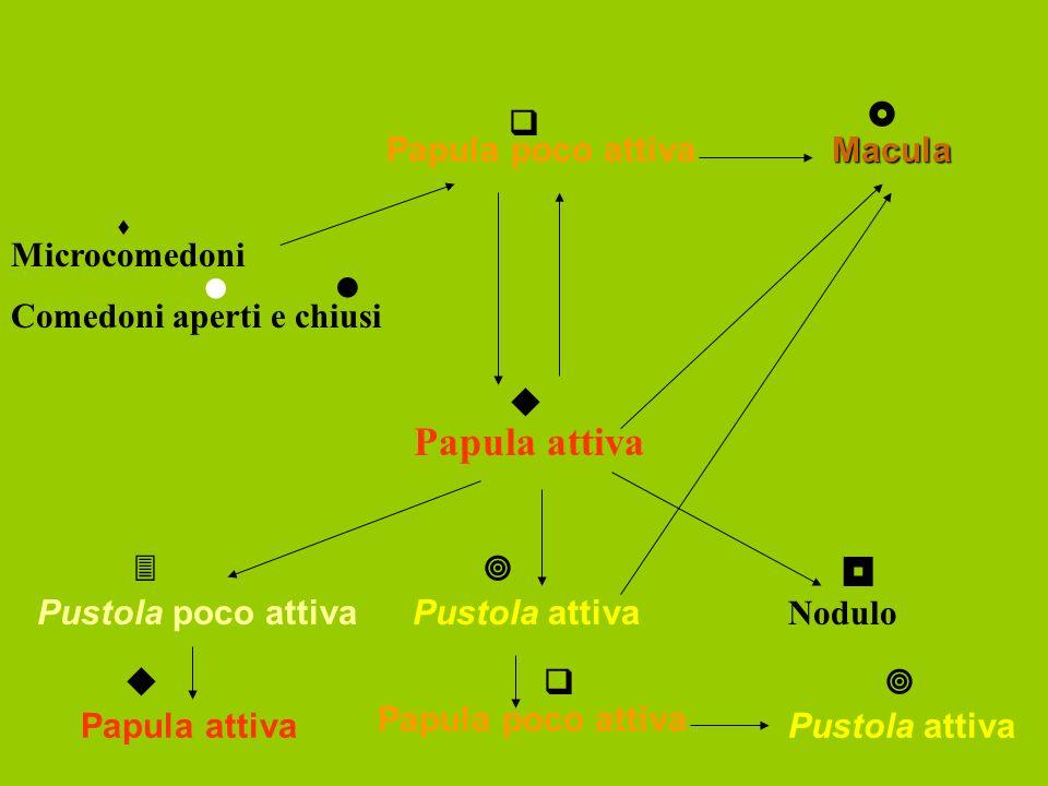 Papula attiva    Papula poco attiva Macula  Microcomedoni  