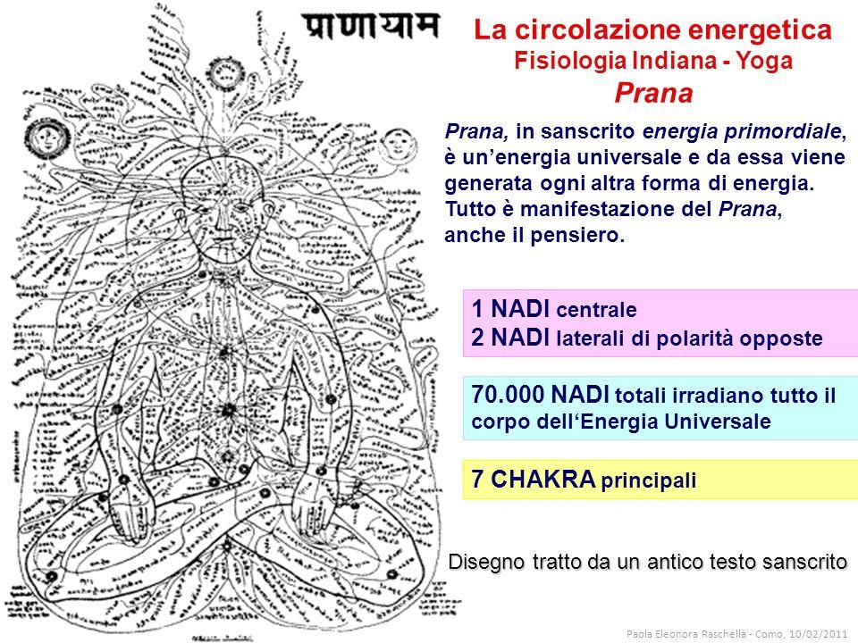La circolazione energetica Fisiologia Indiana - Yoga